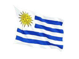 Uruguay Virtual Phone Number